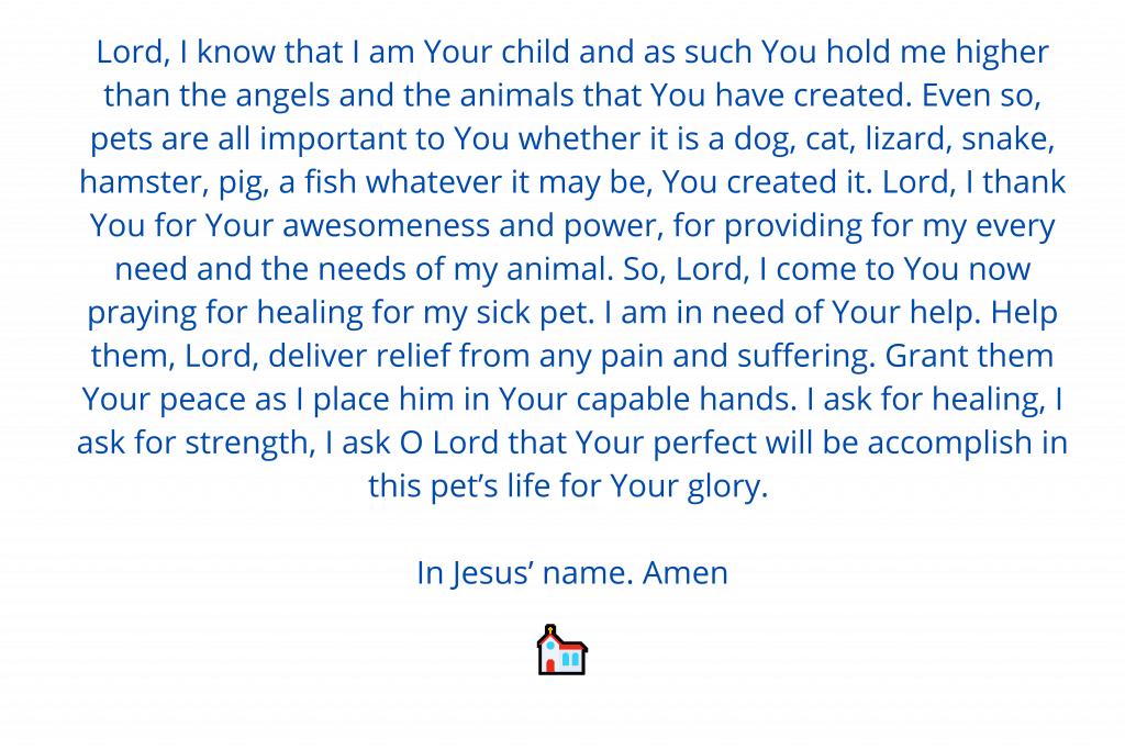 Prayer for sick dog 1