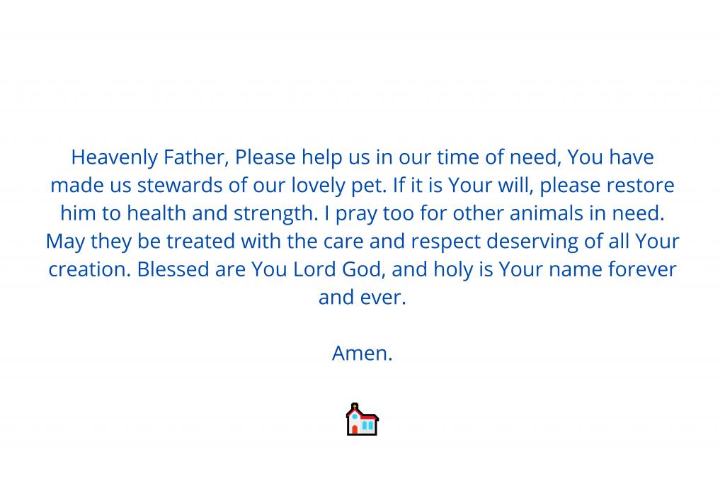 Catholic prayer for sick dog
